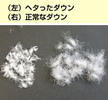 (左)ヘタったダウン(右)正常なダウン